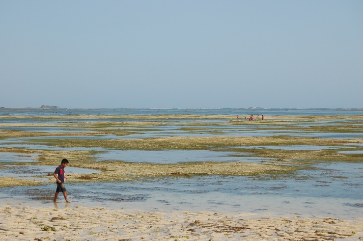27. sept - Kuta Lombok (12)