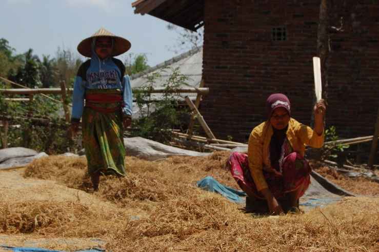 So, we're passing these women who are hitting rice (seperating the rice corn from the shell). Mike and I was about to keep driving after waving to them, when Alex and Laurent stop, get off the scooter and pay them a visit!