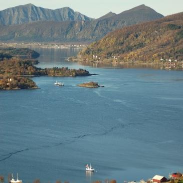 Utsikt mot Reipå fra Sandååsen