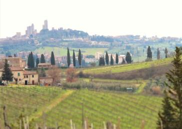 Fra Legoli til San Gimignano. Foto: Synnøve S. Fallmyr