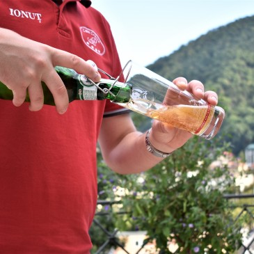 Casa Cranta. Mye godt øl i Romania!